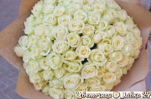 Монобукет из 101 розы