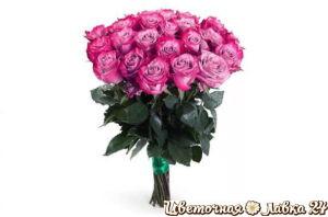 розовые розы 25 шт
