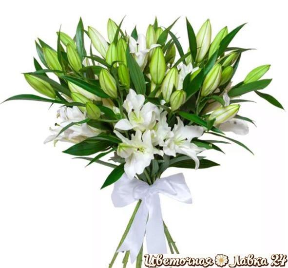 монобукет из 19 белых лилий