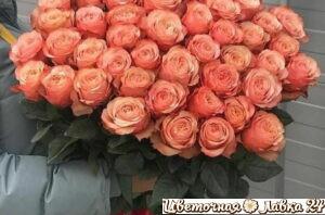 букет из розы кахала 71 штука
