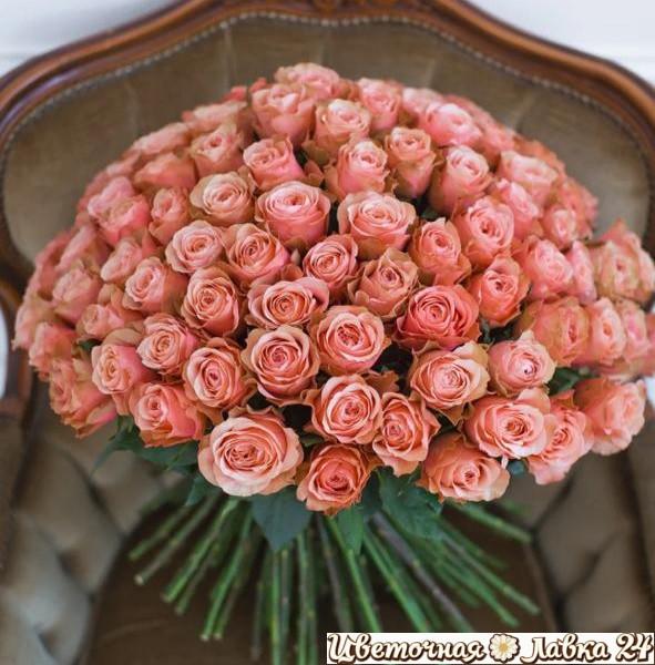Букет из розы кахала 101 штука